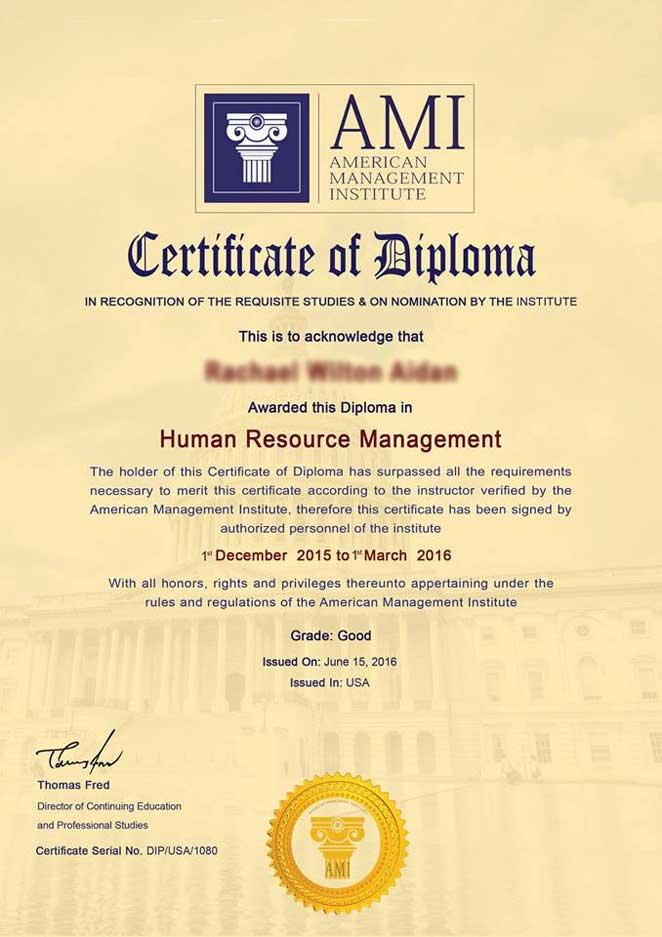 American Management Institute Ami
